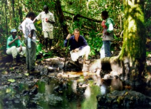 Cameroon Jungle